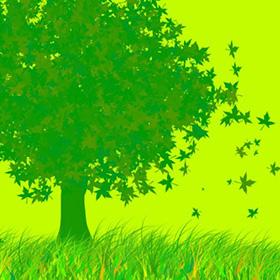 Green Office Day: eco-sostenibilità anche in ufficio