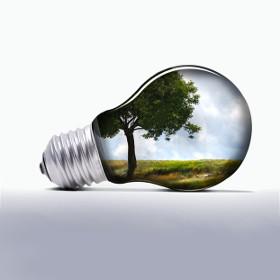 Spirito Green: 3 consigli per un ufficio ecologico
