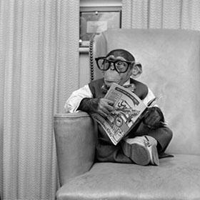 La lettura genera una classe dirigente colta, ma non in Italia